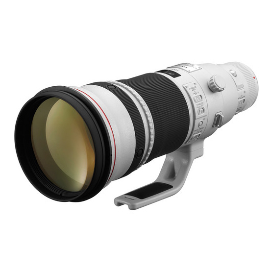 Canon EF 500mm f/4L IS II USM - 2